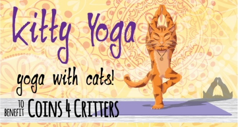 Kitty Yoga - Yoga with Cats